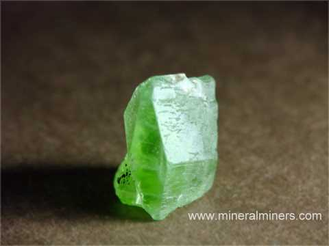 Large Image of perm309_peridot-crystal