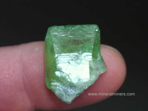 Large Image of perm315_peridot-crystal