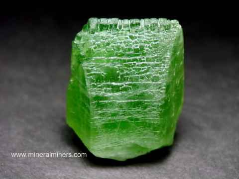 Large Image of perm319_peridot-crystal