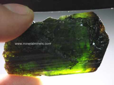 Green Tourmaline Mineral Specimens